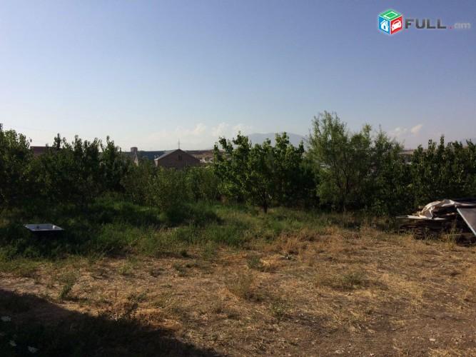 Տնամերձ հողամաս Նոր Հաճնում, այգի, հողատարածք, tnamerz aygi, hoxamas, hoxataracq