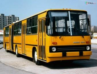 Kgnem ikarus maknishi avtobusi shtanganer iren tulkinerov
