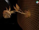 Gexecik u yurahatuk hushanverner tarber aritneri kapakcucyamb