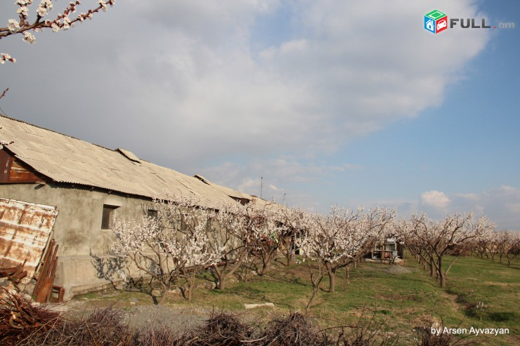 Հողատարածք Հաղթանակ թղմ-սում (4-րդ գյուղ)