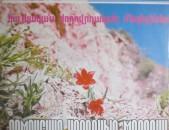 VINYL Ձայնասկավառակներ Армянские народные мелодии - Sարբեր տեսակի ալբոմներ