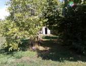 Բյուրական գյուղում տնամերձ հողամաս