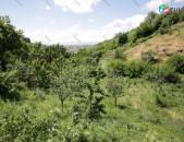 Երազ թաղամասի մոտակայքում 2000քմ (1200քմ սեպականաշնորված) մակերեսով հողատարածք (ՍԱԿԱՐԿԵԼԻ)