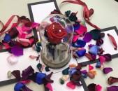 17սմ kolbayov varder, antaram varder, erkarakyac varder, բնական վարդեր, կոլբայով