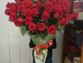 HOLANDAKAN VARDER, vard, հոլանդական վարդեր, վարդ, ծաղիկ