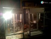 Ադի Բուդի պատրաստելու և վաճառելու սարք (Ադի բուդու ապարատ) /Аппарат для приготовление и продажи Поп Корна (Аппарат Ади-Буди), Adi Budi patrastelu ev vacharelu sarq (Adi Budu apparat)/