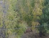 ,, Հողատարածք Ծաղկաձոր գնացող ճանապարհի վրա