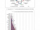 Բիզնես Պլան - Ներդրումային Ծրագիր - Մատչելի գին, մեծ ծավալ և բարձր որակ