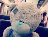 Աշխարհի ամենահայտնի ամենագեղեցիկ և ամենասիրված արջուկները, teddy bear, me to you bear