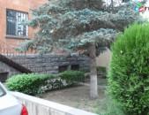 Erkharkani arandznatun Shahinyan poxocum vajarq