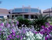 Շարմ էլ Շեյխ - Parrotel Beach Resort 5 * - 7 օր - 450