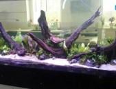 Декорирование аквариумов, террариумов, палюдариумов