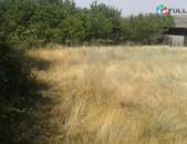 Հողամաս Տնամերձ Պտղնիում, Hox ptxni, hoxamas ptxnium, ptxni, hoxataracq
