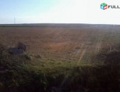 16 hektar hoxataracq q. exvardum