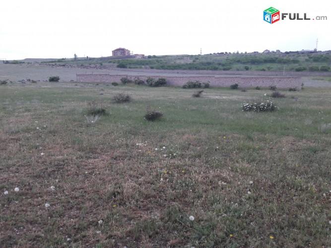 Տնամերձ հող 1000քմ, Պռոշյան գյուղի դիմաց (Պռոշյան սովխոզ)
