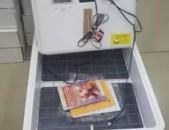Ինկուբատոր инкубатор inkubator
