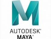 3D Մոդելավորման Դասընթաց Maya և 3Ds Max ծրագրերով