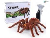 Սարդ ռոբոտ, հեռակառավարմամբ, Robot sard pultov spider
