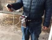 Ճագարների Արհեստական Սերմնավորում Հայաստանում (Napastak, chagar, krolik, sermnav