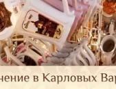 Новый год и Лечение в Чехии (КАРЛОВЫ ВАРЫ) 2250, на 2 человека 12 дней пн 30.12.