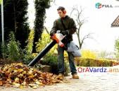 Օրավարձով Այգեգործական Փոշեկուլ Տերևների Մաքրման Համար, Poshekul, Пылесос