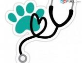 Առողջություն, կենդանիներ, խնամք, ծառայություններ, անասնաբուժարան, aroxjutyun, ke