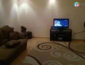 AL0836 Վարձով է տրվում 2 սենյականոց բնակարան Նանսենի փողող, Գայի արձանի մոտ