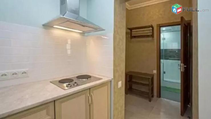 AL7381 Վարձով 2 սենյականոց բնակարան Թումանյան, Բրյուսովի մոտ