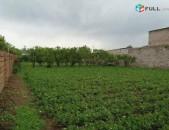 Տնամերձ հողամաս, Ոսկեվազ գյուղում