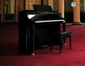 CASIO GP-500BP Celviano Grand Hybrid Piano elektro dashnamur