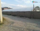 Ջերմոցային տնտեսության Գեղանիստ գյուղում (gexanist, geghanist, jermoc, masis)