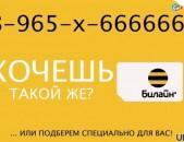 Gold 03366636 shat hamarner sksac 5000 dramic