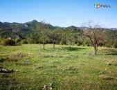 4553 ք / մ տնամերձ հողամաս Դիլիջանի Հովք գյուղում գեղեցիկ տեսարանով
