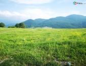 2050 ք/մ տնամերձ հողամաս Իջևանի Ենոքավան գյուղում
