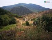 2210 բնակելի կառուց. հողամաաս Դիլիջանի Աղավնավանք գյուղում(8/152)