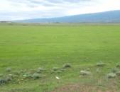 10հա (100,000քմ) գյուղնշանակության հարթ, բարձր որակի հողատարածք Եղվարդում