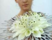 Floristika das@ntacner tarosikneri devavorum