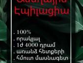 ԱՍԵՂԱՅԻՆ ԷՊԻԼԱՑԻԱ  100 %