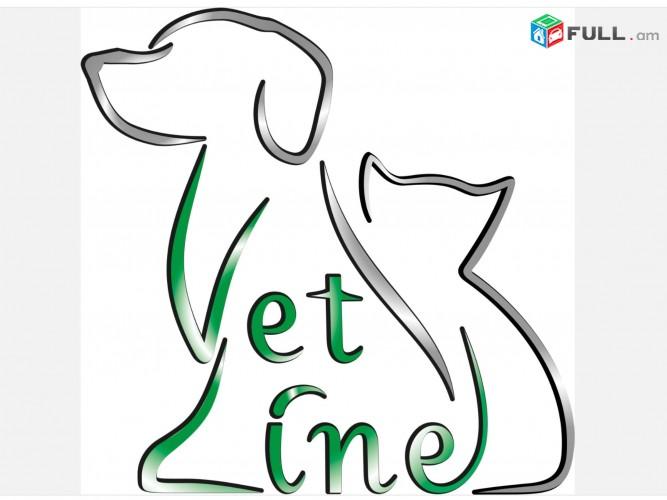 ՎԵՏԼԱՅՆ Անասնաբուժական կլինիկա, ВЕТЛАЙН Ветеринарная клиника, VETLINE Veterinary Clinic :Anasnabuj ,Anasnabuyj,Anasnabujakan