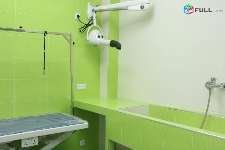 ՎԵՏԼԱՅՖ Անասնաբուժական կլինիկա, Anasnabuj, Anasnabuyj, Ветеринарная клиника, vet