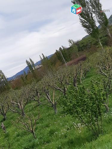 Կոտայքի մարզ / գյուղ Գառնի / 2600քմ հողատարածք